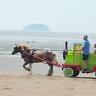 Sparkle Horse carriage on Beach by Arvind Singh