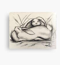 Sleeping Rabbits Canvas Print