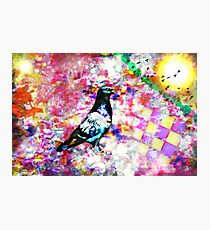 The colors of my dream (What do you see in the colors of your dreams?) Photographic Print
