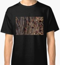 Alien Plantlife - Peculiar Succulent Plants With Beautiful Maroon Rosettes Classic T-Shirt