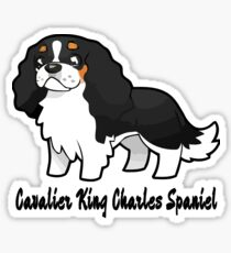 Cavalier Collection - Tricolour Sticker