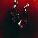 Flamenco Fire by Richard Young