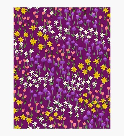Violet Field of Flowers Photographic Print
