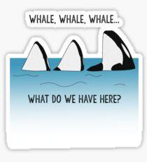 WHALE, WHALE, WHALE... Sticker