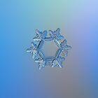 Snowflake photo - Sunflower by Alexey Kljatov
