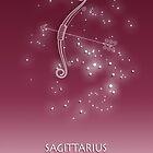 Sagittarius Zodiac constellation - Starry sky by chartofthemomen