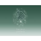 Taurus Zodiac constellation - Starry sky by chartofthemomen