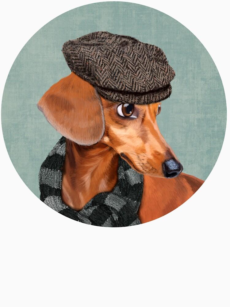 Elegante Sr. Dachshund de Sparafuori
