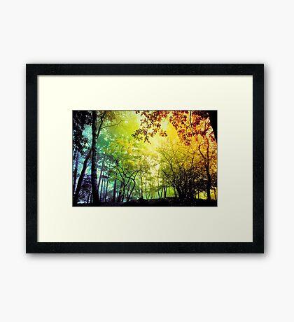 Bosque verde Lámina enmarcada