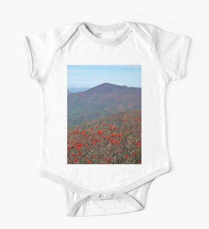 View from Craggy Dome Mountain Kids Clothes