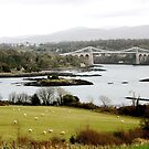 Menai bridge.  by ccrcats