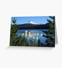Mt Jefferson, Olallie Lake and beargrass Greeting Card
