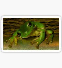 Smiling Green Tree Frog  Sticker