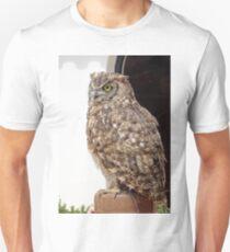 Lord of Wings - Owl Bird of prey T-Shirt