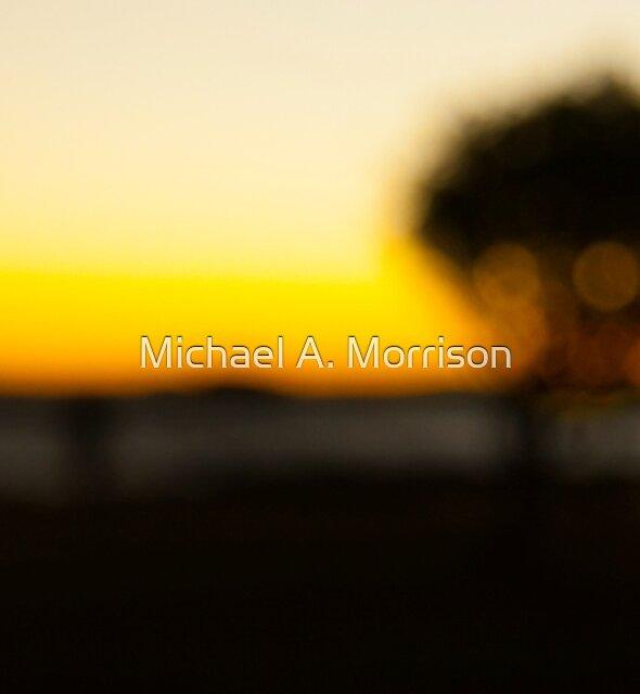 vapour of your hearts content  by Michael A. Morrison