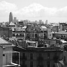 View from Casa Mila by Abigail  Lewis