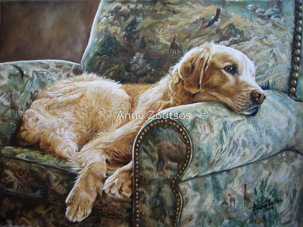 Golden Retriever in Chair by Anne Zoutsos