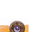 Close up of a 12ga shotgun shell with shallow DOF. by doorfrontphotos