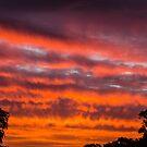 Warrandyte Sunset X by Adam Le Good