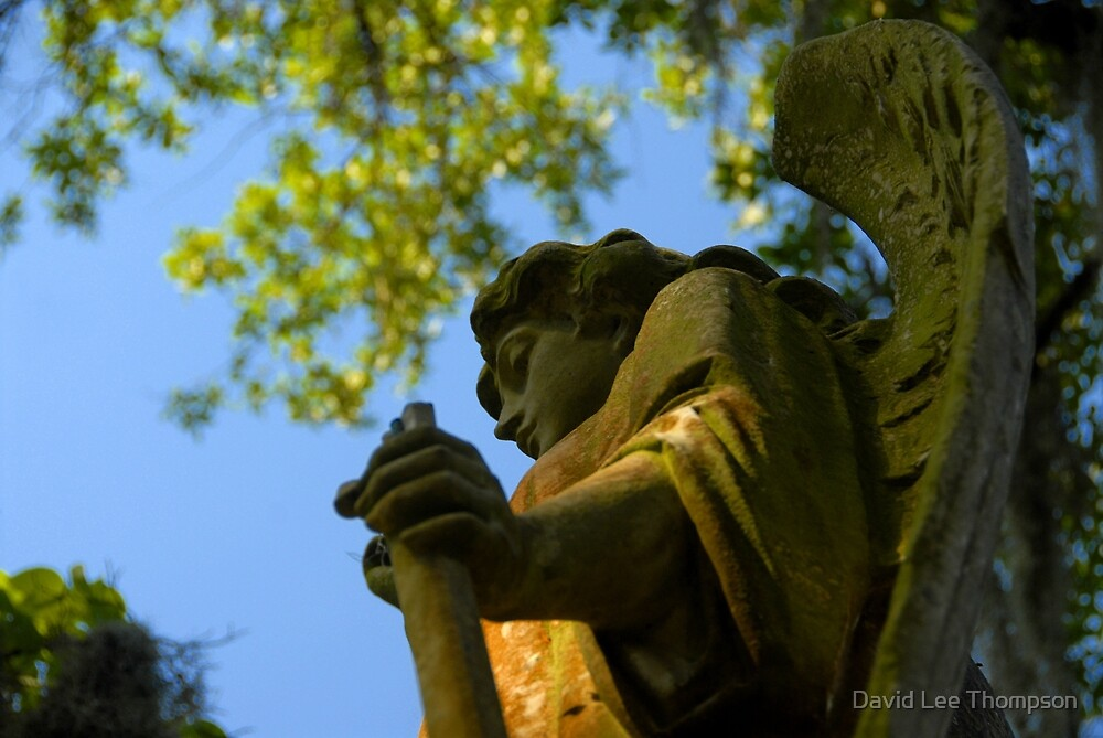 ANGEL OF SAVANNAH by David Lee Thompson