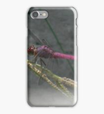 Dragonfly in July iPhone Case/Skin