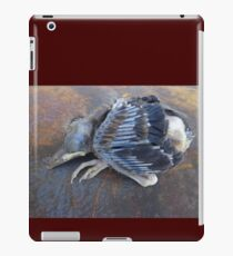 One bird escape from the Zoo of Death iPad Case/Skin