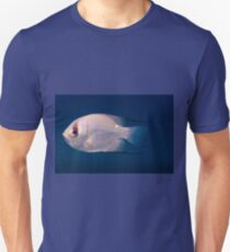 Threadfin Pearl Perch, Ningaloo Reef T-Shirt