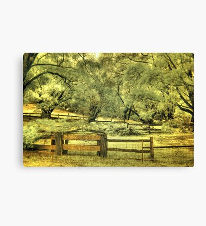Donnelly River farm yard, Western Australia Canvas Print