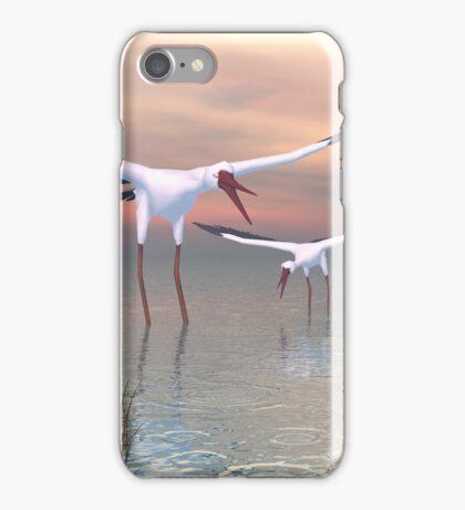 Return Of The Birds iPhone Case/Skin