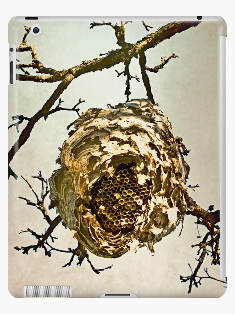 Hornet's Nest by Valerie  Fuqua