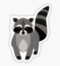 Cute Little Raccoon Sticker