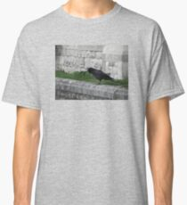 Crowing in Blackheath Classic T-Shirt