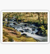 Walking near Dolgellau, West Wales Sticker