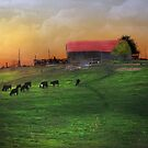 """""""Twilight & The Old Farm"""" by Melinda Stewart Page"""
