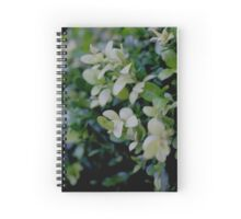 Green Bushes Spiral Notebook