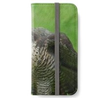 The Peregrine Falcon  iPhone Wallet/Case/Skin