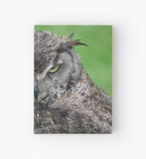 Great Horned Owl Hardcover Journal