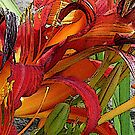 A Patch of Lilies Red Orange & Yellow by Terry Krysak