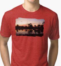 Tranquil Equine Tri-blend T-Shirt