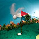 Let's Play Golf - Birdie by Alex Grisward