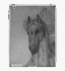 """""""Spike"""" iPad Case/Skin"""