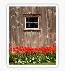 Red Tulips & Barn Sticker