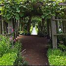 Secret Garden Pathway by jenndes