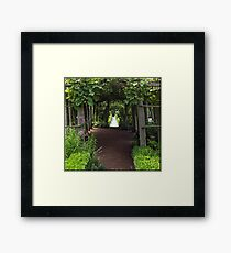 Secret Garden Pathway Framed Print