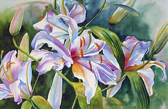 Casa Blanca Lilies by Pat Yager