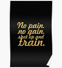 No pain no gain... Gym Motivational Quote Poster