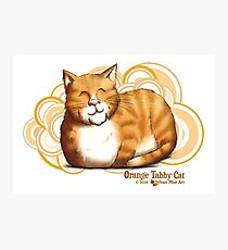 Orange Tabby Cat Photographic Print