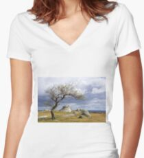 The nature of progress Women's Fitted V-Neck T-Shirt
