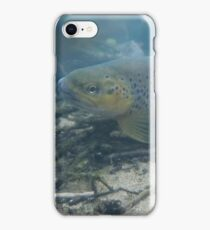 French Trout iPhone Case/Skin