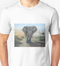 Having a walk at daybreak Unisex T-Shirt